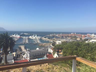 carol navy view