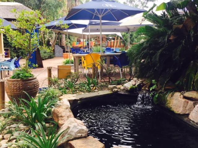 palms garden square.jpg