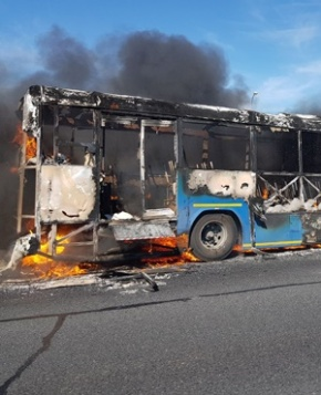 taxi strike bus