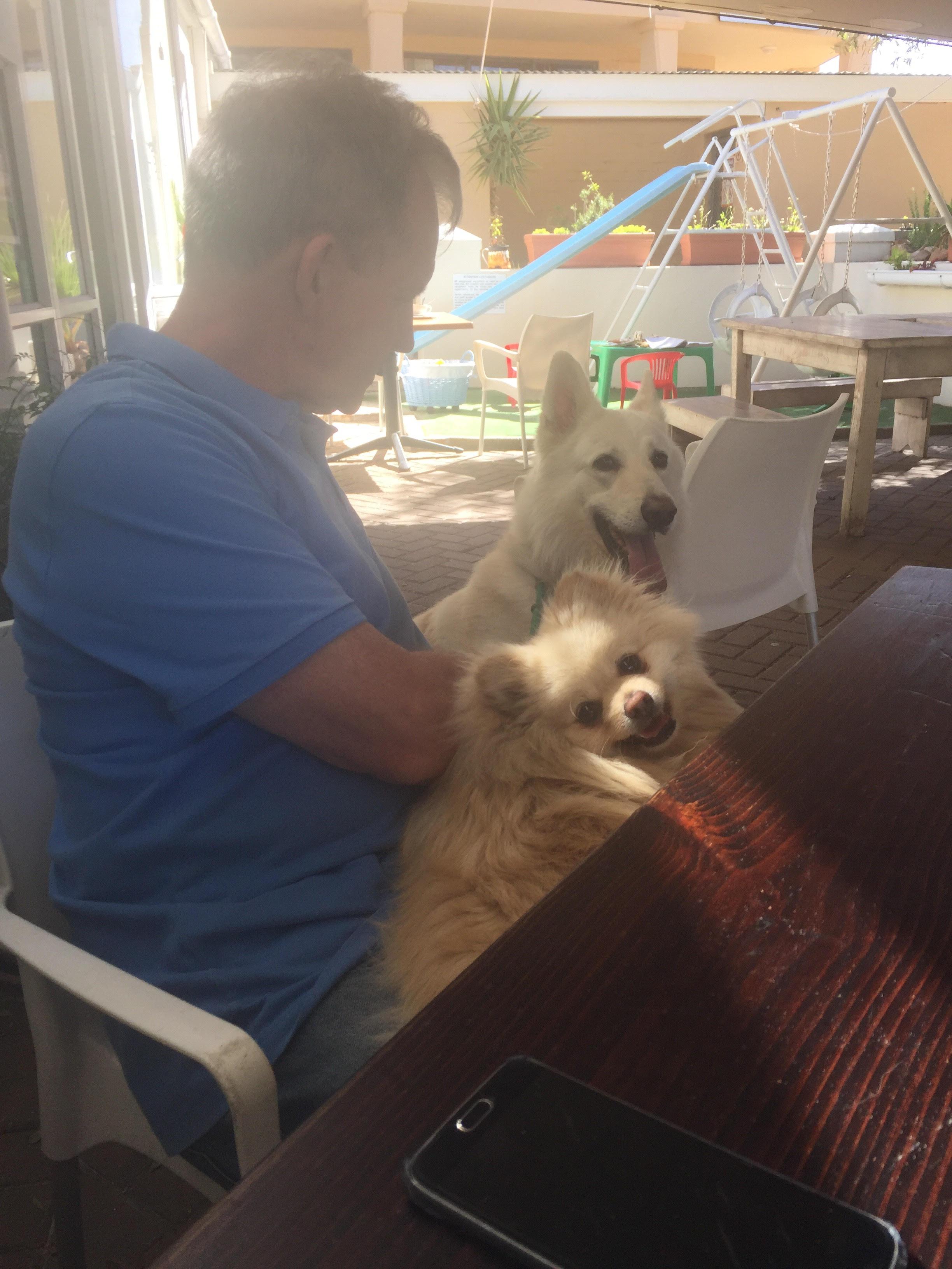 pups at delish.jpg
