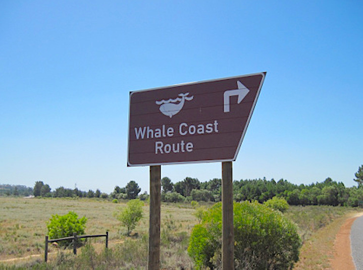 whale-coast-route-sign